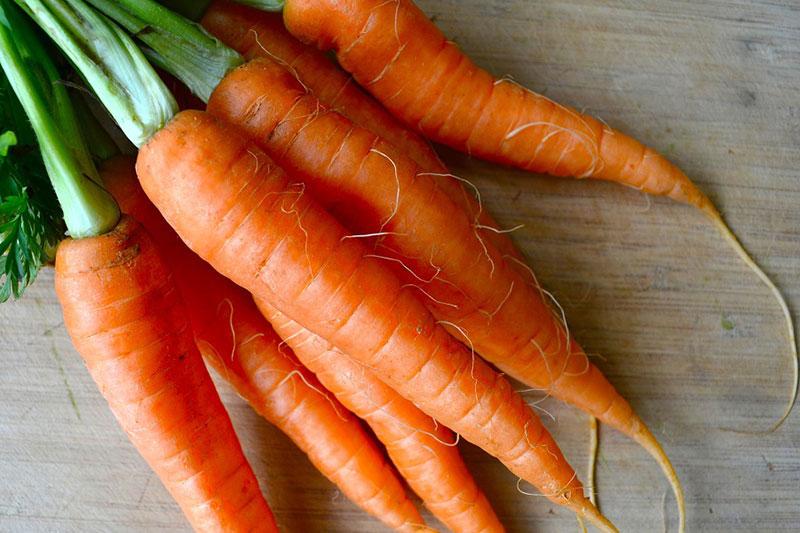 Морковь во время хранения стала мягкой